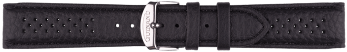 Leatherstrap HS100